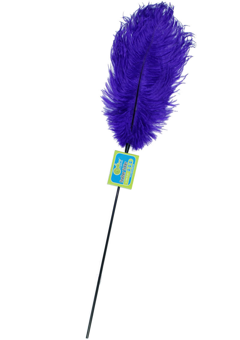 Whip Smart Feather Tickler Passion Blue